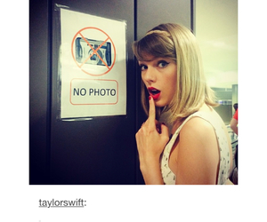 funny, Taylor Swift, and tumblr image