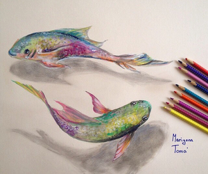 fish, art, and colors image