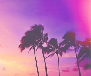 pink, palm trees, and purple image