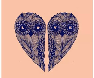 owl, love, and background image