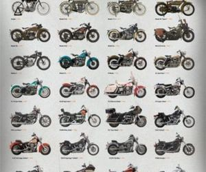 motorcycles and harleydavidson image