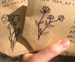 aesthetic, flower, and sketch image