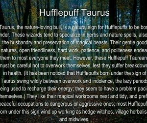 astrology, hufflepuff, and harry potter image