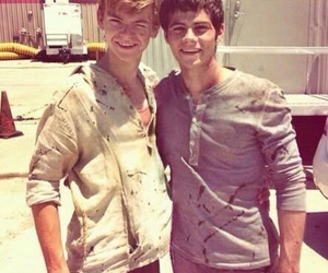 thomas, newt, and dylan o'brien image