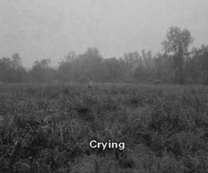 crying, sad, and cry image