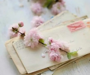flowers, Letter, and letters image