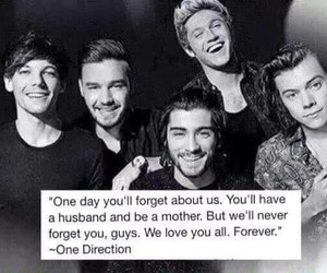 band, quotes, and directioner image