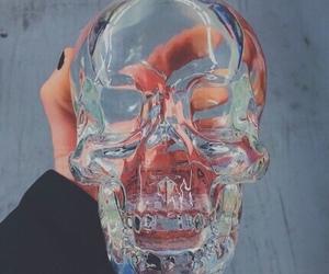 vodka, skull, and bottle image