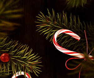 candy canes, christmas, and xmas image