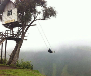 swing, tree, and nature image