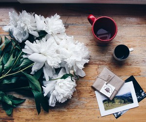 calm, coffee, and flower image
