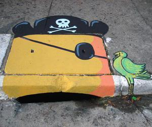 parrot and pirate image