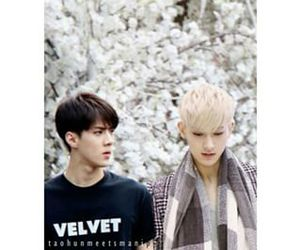 edit, exo, and tao image