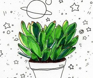 plants, stars, and green image