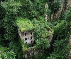 green, nature, and italy image