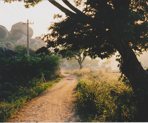 nature, landscape, and road image