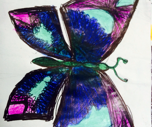 butterfly, colors, and fly image