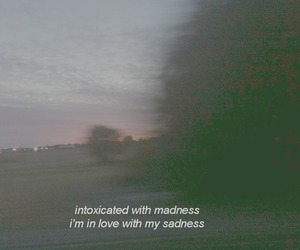 sadness, madness, and grunge image