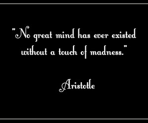madness, philosophy, and quote image