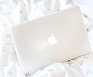 apple, white, and mac image
