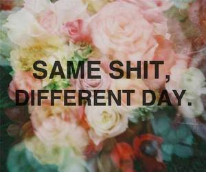 day, lol, and same image