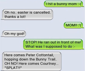 funny, bunny, and text image