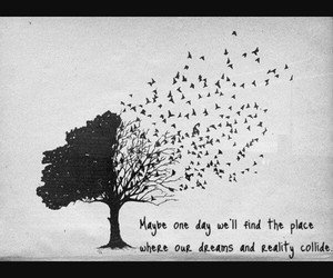 Dream, reality, and tree image