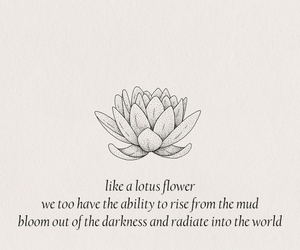 flower, symbol, and lotus flower image