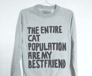 cat, sweatshirt, and funny image