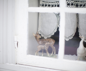 deer, white, and window image