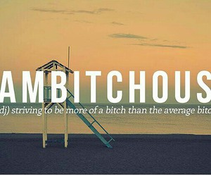 bitch, quotes, and funny image