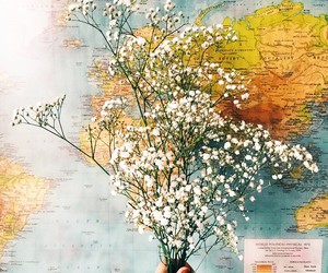 flowers and map image