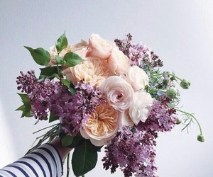beauty, white, and flowers image