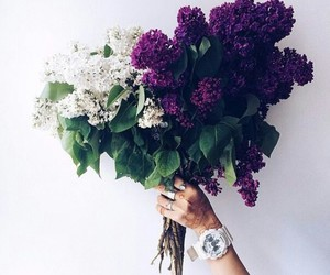 bright, flowers, and gift image