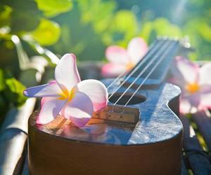 flowers, hawaii, and guitar image