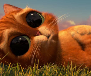 big eyes, cat, and please image