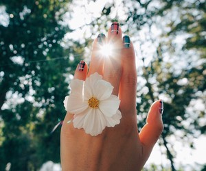 flower, girly, and nails image