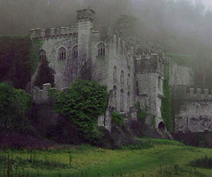 castle, nature, and fog image