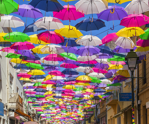 beautiful, umbrella, and colorful image