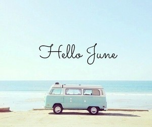 beach, fun, and june image