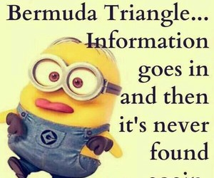 minions, brain, and funny image