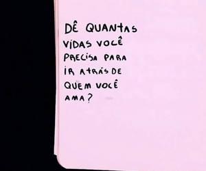 amor and vida image