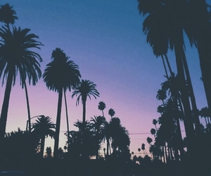 Beverly Hills, hipster, and summer image