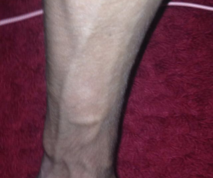 boy, hipster, and veins image