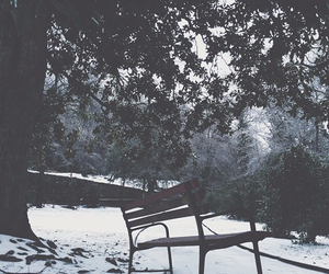 bench, grunge, and nature image