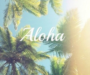summer, Aloha, and sun image