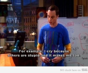 the big bang theory, sheldon, and funny image