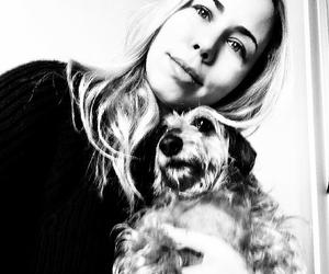 daschund and dog image