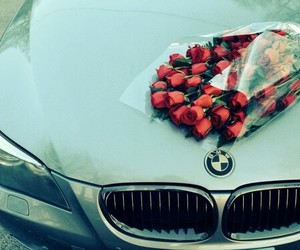 bmw, car, and rose image