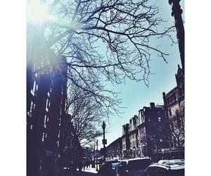 newbury street and hannah selleck image